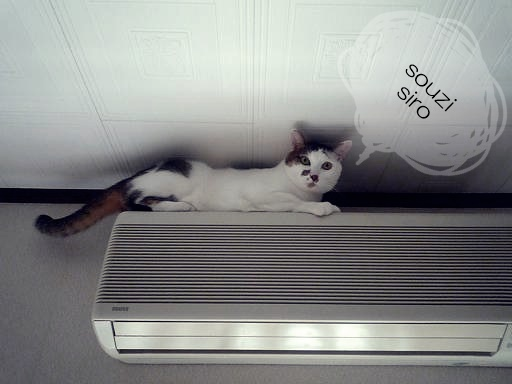 Air conditioning-Cleaninneco